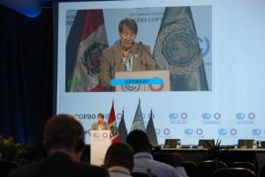 Umweltministerin Barbara Hendricks spricht vor kaum besuchter Vollversammlung.  Foto: privat