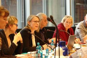 Daniela Setton stellt IASS/FÖS-Studie vor (Foto: privat)
